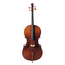 Morrison GZCC2 1/2 Cello Outfit
