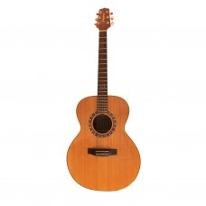 Takamine F-470ss Acoustic guitar