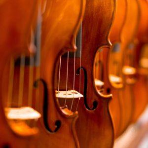 Strings 弦樂器