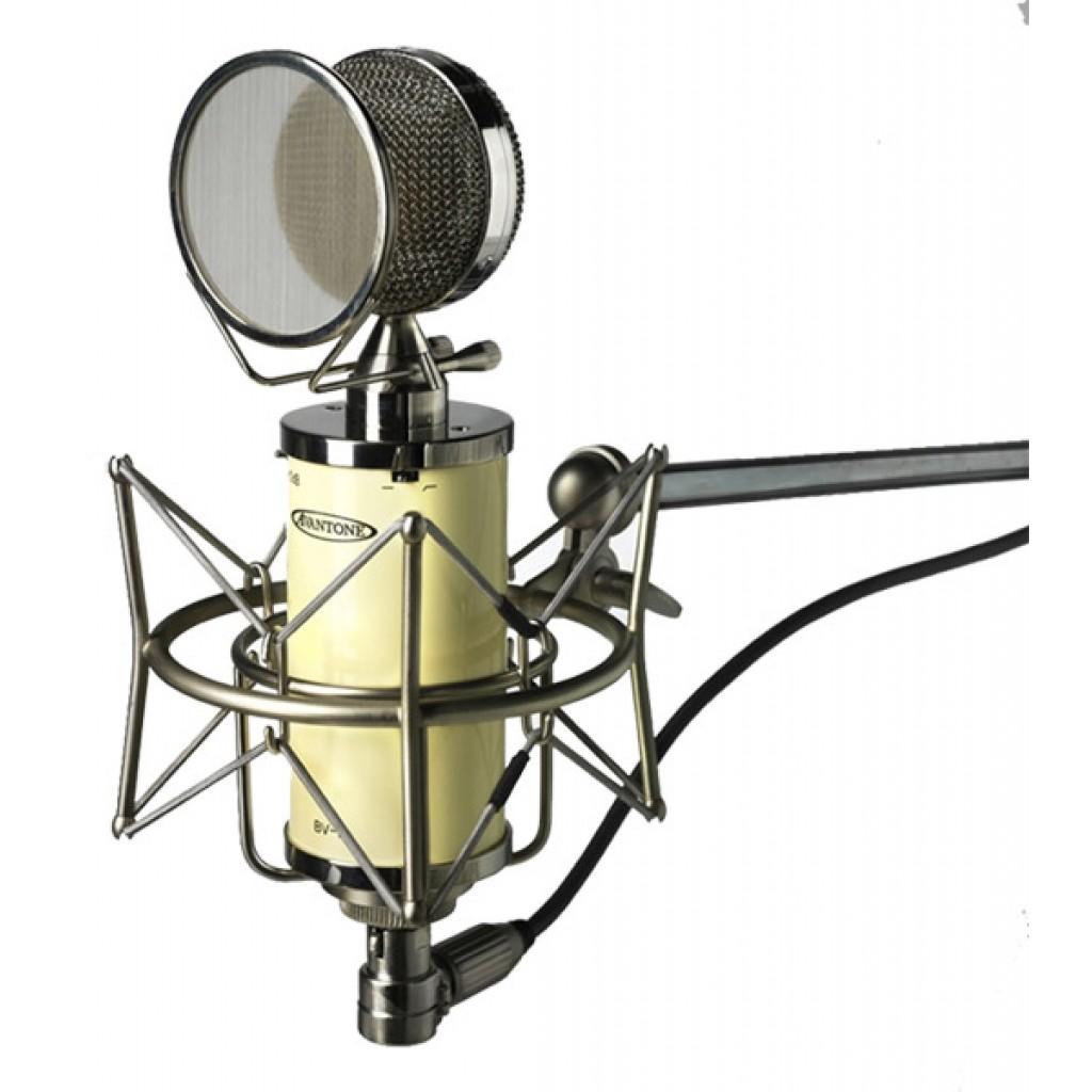 Avantone BV-1 Large-diaphragm Tube Condenser Microphone (DEMO)