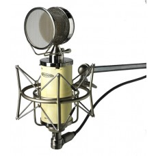 Avantone BV-1 Large-diaphragm Tube Condenser Microphone (DEMO)